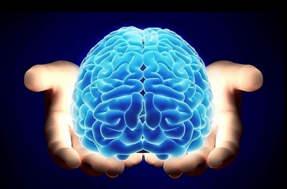 cerebro-100%